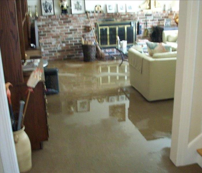 Water Damage Fenton Residents: We Specialize in Flooded Basement Cleanup and Restoration!