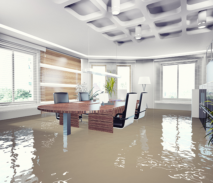 Prosper Water Damage