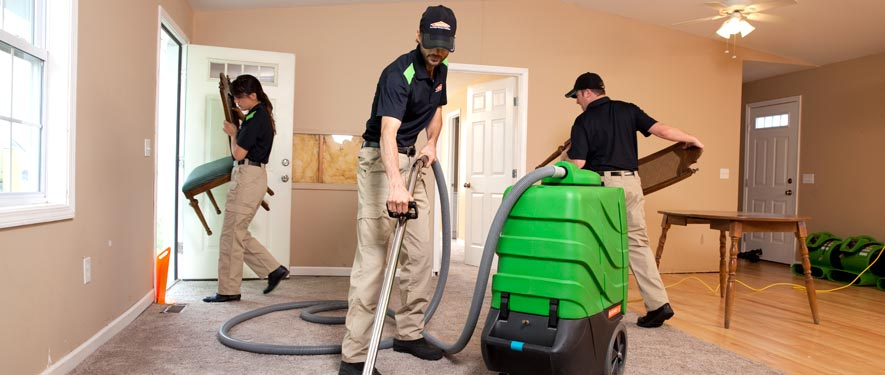 Fenton, MI cleaning services